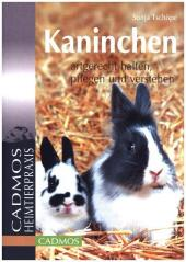 Kaninchen artgerecht halten, pflegen und verstehen Cover