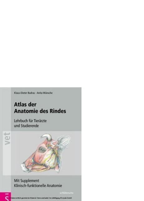 Atlas der Anatomie des Rindes (eBook) | HOFER life