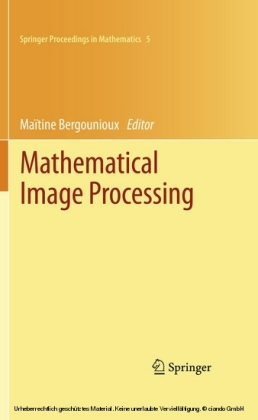 Mathematical Image Processing