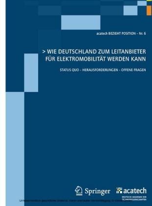 Wie Deutschland zum Leitanbieter für Elektromobilität werden kann