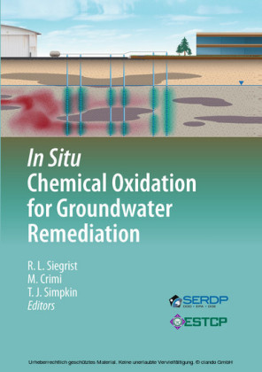 In Situ Chemical Oxidation for Groundwater Remediation