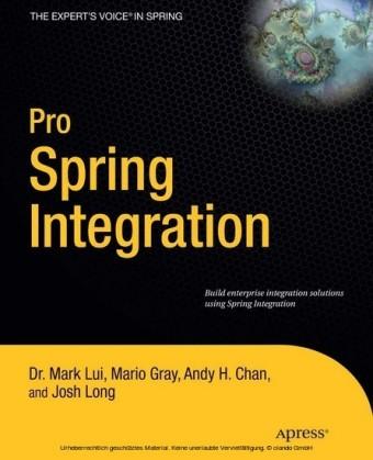 Pro Spring Integration