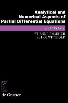 Analytical and Numerical Aspects of Partial Differential Equations