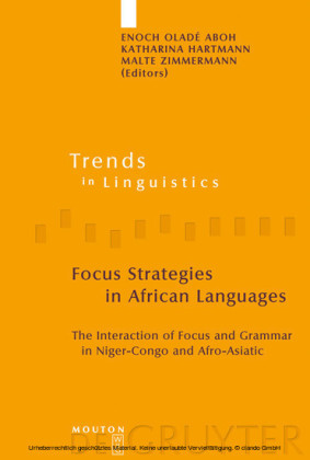 Focus Strategies in African Languages