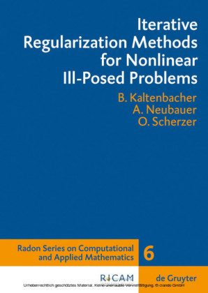 Iterative Regularization Methods for Nonlinear Ill-Posed Problems
