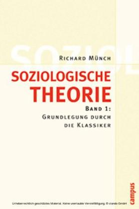 Soziologische Theorie. Bd. 1