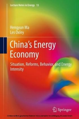 China's Energy Economy