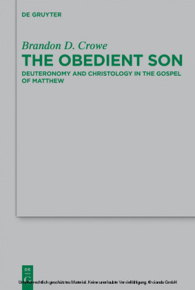 The Obedient Son