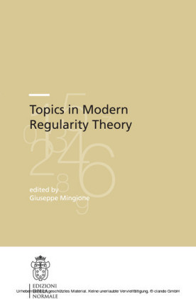 Topics in Modern Regularity Theory