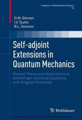 Self-adjoint Extensions in Quantum Mechanics