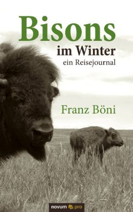 Bisons im Winter
