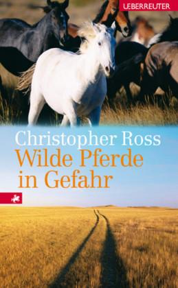 Wilde Pferde in Gefahr