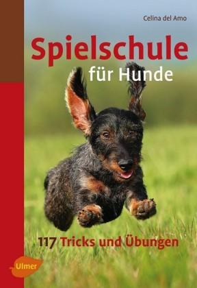Spielschule für Hunde