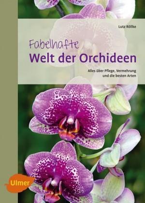 Fabelhafte Welt der Orchideen