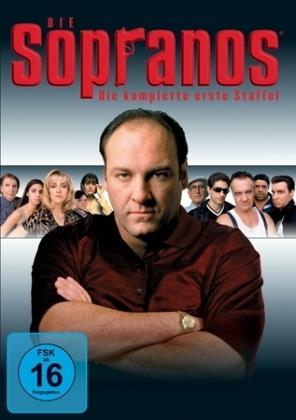 Die Sopranos, 4 DVDs
