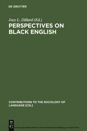 Perspectives on Black English