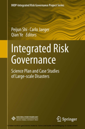Integrated Risk Governance