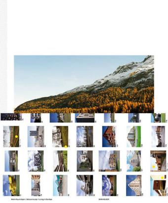 Wohn Raum Alpen / Abitare le alpi / Living in the Alps