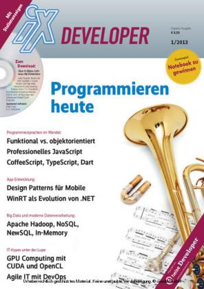 Programmieren heute 2013 (iX Developer)
