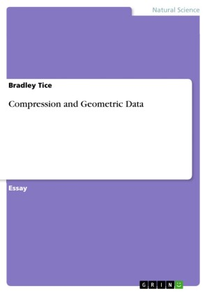 Compression and Geometric Data