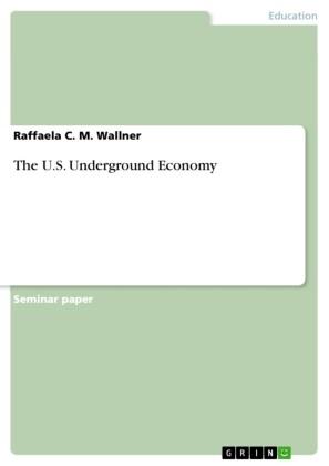 The U.S. Underground Economy