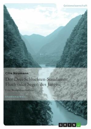Der Drei-Schluchten-Staudamm: Fluch oder Segen des Jangtse