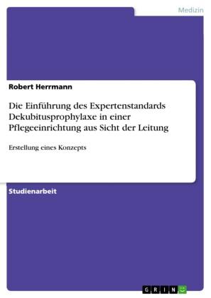 Die Einführung des Expertenstandards Dekubitusprophylaxe in einer Pflegeeinrichtung aus Sicht der Leitung