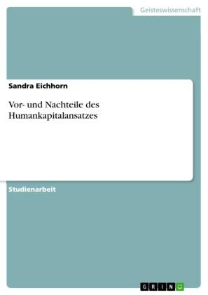 Vor- und Nachteile des Humankapitalansatzes