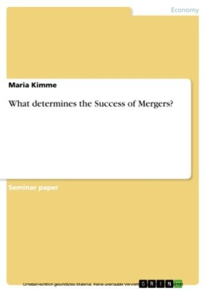 What determines the Success of Mergers?