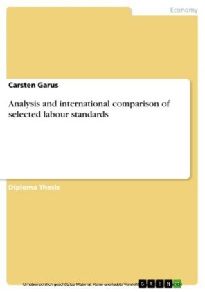 Analysis and international comparison of selected labour standards