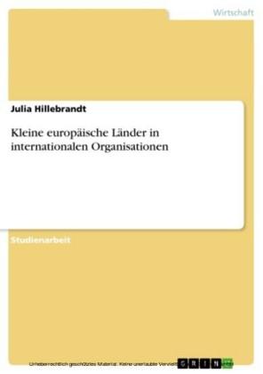 Kleine europäische Länder in internationalen Organisationen