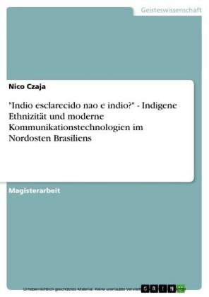 'Indio esclarecido nao e indio?' - Indigene Ethnizität und moderne Kommunikationstechnologien im Nordosten Brasiliens
