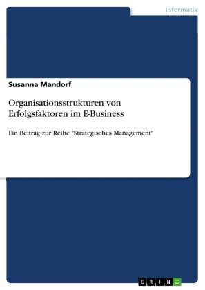 Organisationsstrukturen von Erfolgsfaktoren im E-Business