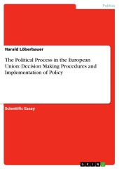 The Political Process in the European Union: Decision Making Procedures and Implementation of Policy