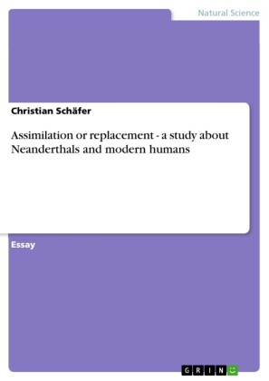 Assimilation or replacement - a study about Neanderthals and modern humans