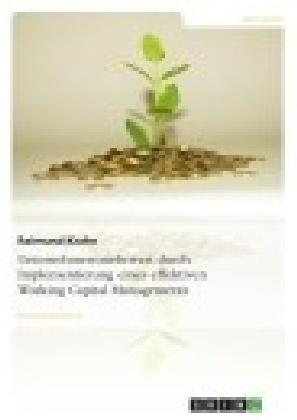 Unternehmensmehrwert durch Implementierung eines effektiven Working Capital Managements