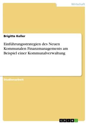 Einführungsstrategien des Neuen Kommunalen Finanzmanagements am Beispiel einer Kommunalverwaltung
