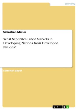 What Seperates Labor Markets in Developing Nations from Developed Nations?