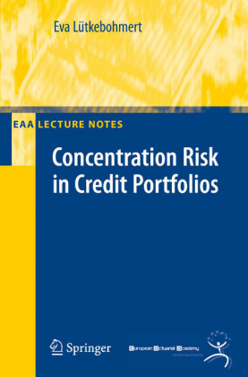 Concentration Risk in Credit Portfolios