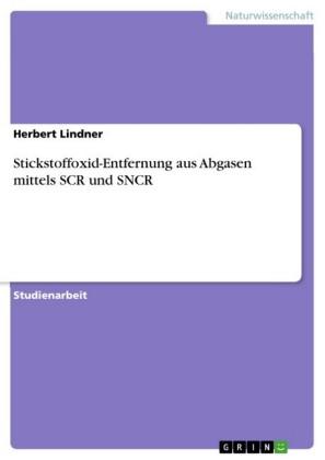 Stickstoffoxid-Entfernung aus Abgasen mittels SCR und SNCR