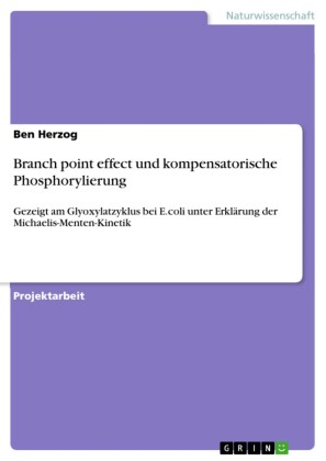Branch point effect und kompensatorische Phosphorylierung