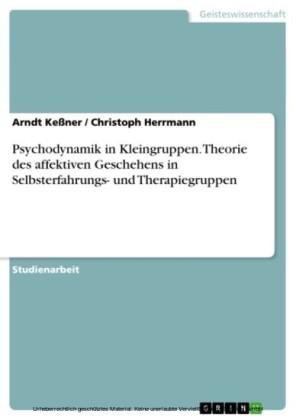 Psychodynamik in Kleingruppen. Theorie des affektiven Geschehens in Selbsterfahrungs- und Therapiegruppen