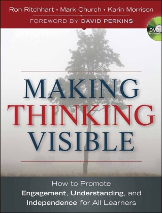 Making Thinking Visible,