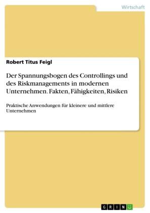Der Spannungsbogen des Controllings und des Riskmanagements in modernen Unternehmen. Fakten, Fähigkeiten, Risiken