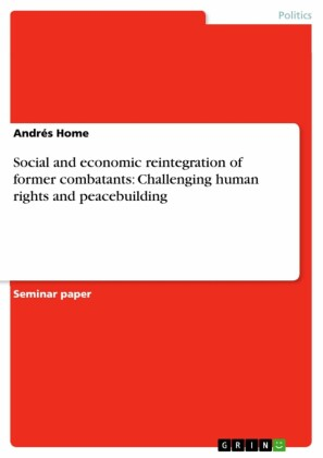 Social and economic reintegration of former combatants: Challenging human rights and peacebuilding