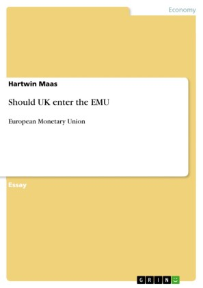 Should UK enter the EMU