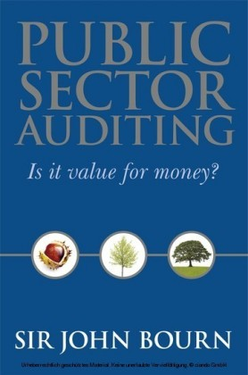 Public Sector Auditing