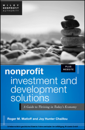 Nonprofit Investment & Development Solutions + Website