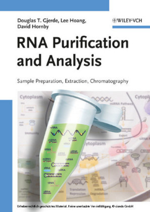 RNA Purification and Analysis