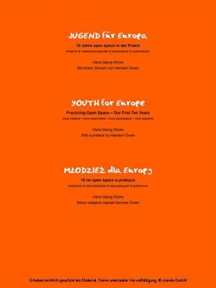 Jugend für Europa, 10 Jahre open space Praxis